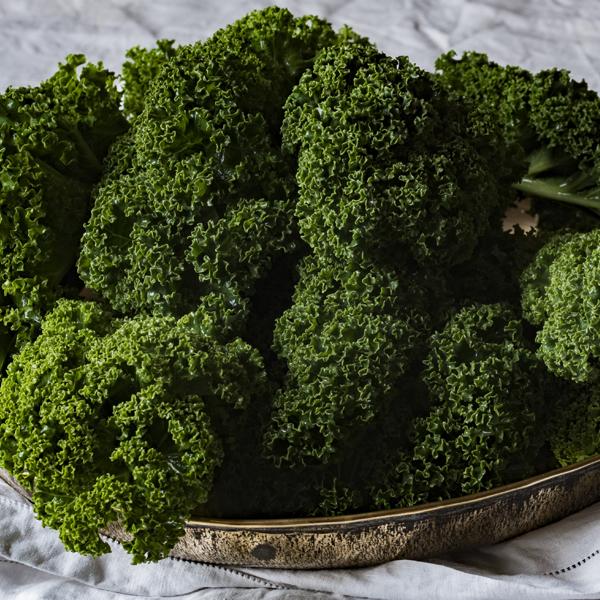 Cải xoăn (Kale) thuộc loài Cải bắp dại (Acephala group) giúp hỗ trợ giảm cân hiệu quả